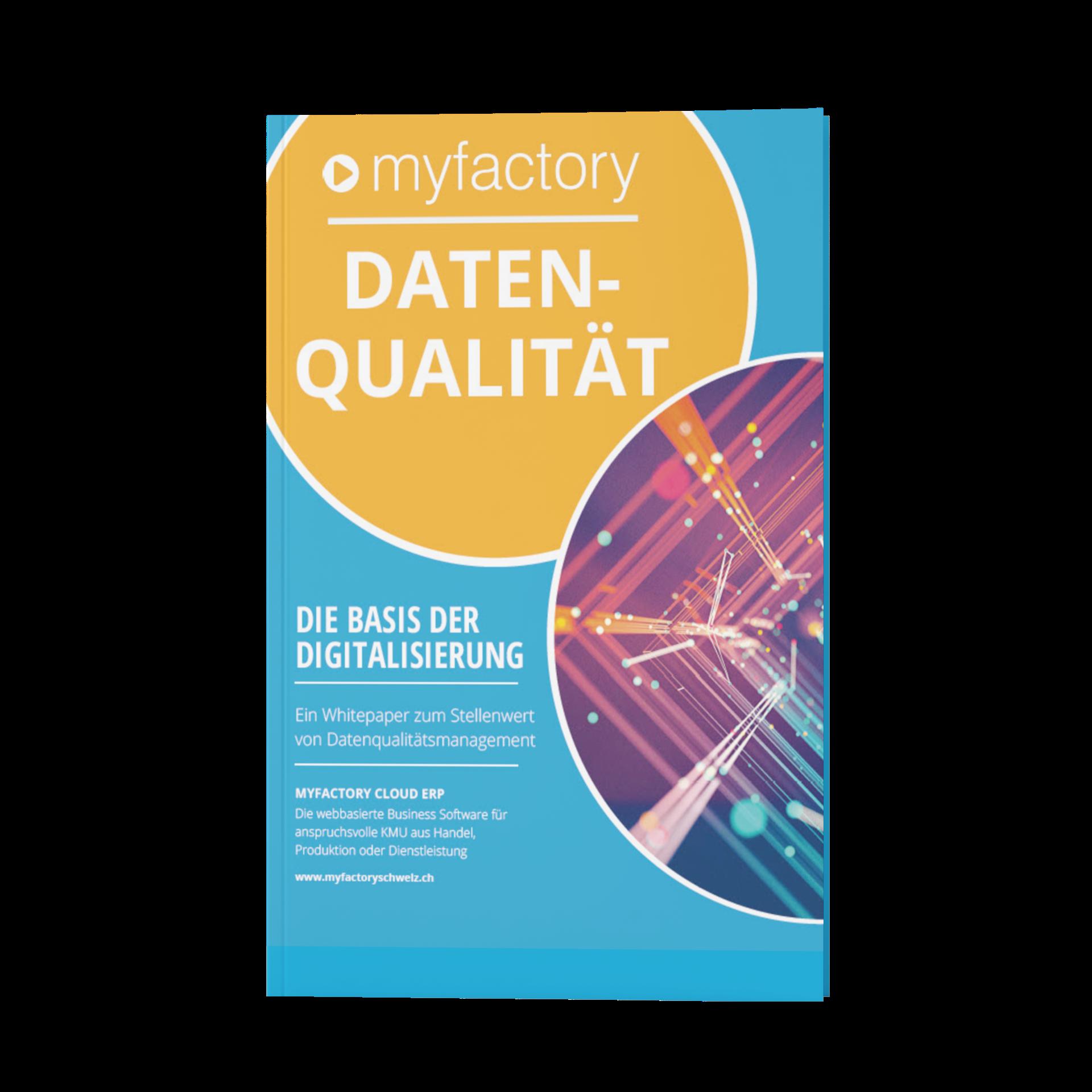Datenqualität – die Basis der Digitalisierung_book-cover
