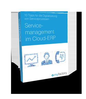 thumb-lp-servicemanagement-cloud-erp.png
