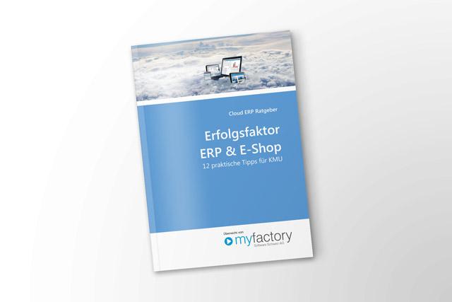Erfolgsfaktor ERP & E-Shop - 12 Tipps für Ihren E-Shop